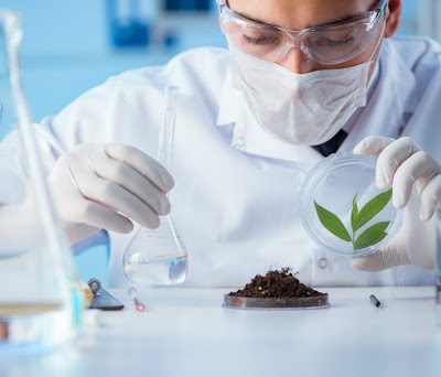 J&K govt to establish two pesticide testing labs in Kashmir